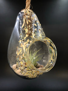 Iris Orange Blown Glass Hanging Terrarium