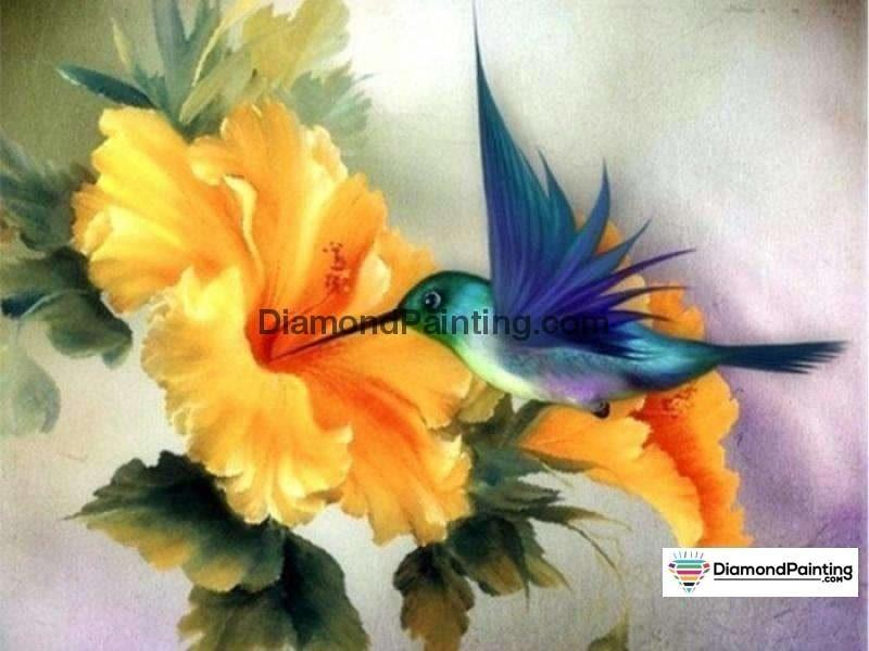 Ships From USA - Hummingbird Feed 50x40cm - DiamondPainting.com