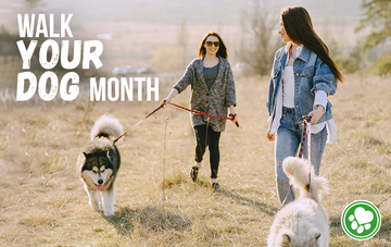 Walk Your Dog Month