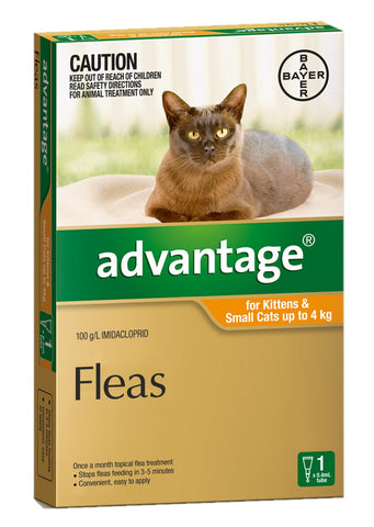 ADVANTAGE CAT 0-4KG SMALL ORANGE - Humble Pet Products