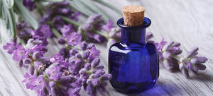 Essential Oils Treating More Than Anxiety