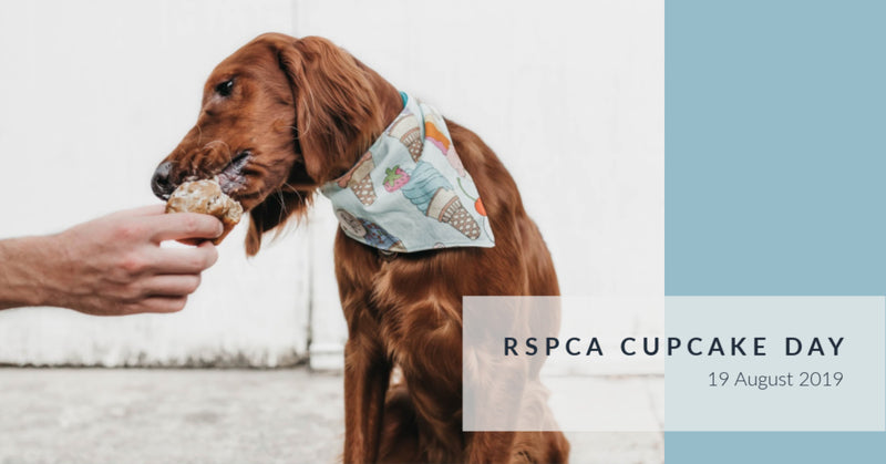 RSPCA Cupcake Day | 19 August 2019