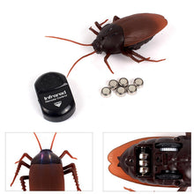 Amazing Remote Control Cockroach