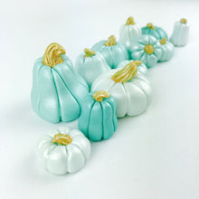 Teal Ombre pumpkin toppers