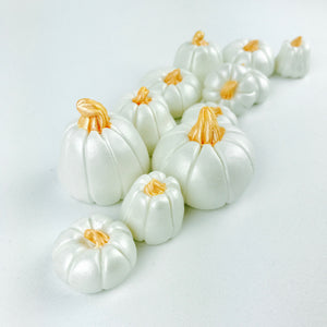 White pumpkin toppers