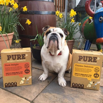 """FRANK LOVES HIS PURE DOG FOOD"""