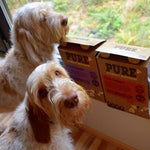 IT IS EASY TO TRAVEL WITH OUR DOGS AND THEY ARE HAPPY WITH THE FOOD