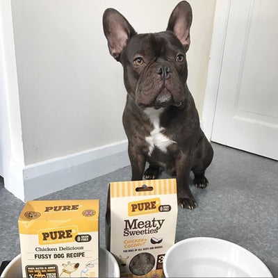WE ARE DELIGHTED TO HEAR STITCH THE FUSSY FRENCHIE HAS FOUND A FOOD HE LOVES