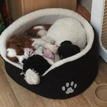 """COOKIE MY CAVALIER KING CHARLES IS A RESCUE DOG TRIED LOTS OF FOODS DUE TO AN UNKNOWN INTOLERANCE INCLUDING A VERY EXPENSIVE VET PRESCRIPTION"""