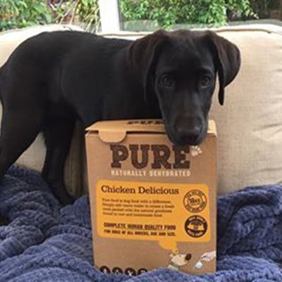 """SO PLEASED I FOUND THIS PURE FOOD. I HAVE A LAB PUPPY WHO HAD FOUL SMELLING LOOSE FAECES FROM THE DAY WE GOT HER...."