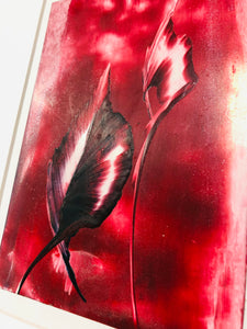 red leaf painting