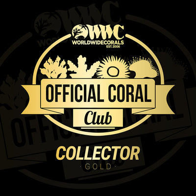 WWC Official Coral Club - Gold Subscription