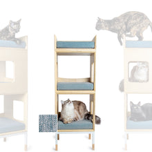 Load image into Gallery viewer, Custom Mjau Haus Modular Cat Furniture Modular Cat Furniture Mjau Home Modern Cat Furniture Double Cube With Bed Chartreux Blue