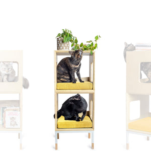 Modular Mjau Haus Modular Cat Furniture Mjau Home Modern Cat Furniture Double Cube Without Bed Sunbeam Yellow