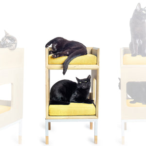 Modular Mjau Haus Modular Cat Furniture Mjau Home Modern Cat Furniture Single Cube With Bed Sunbeam Yellow