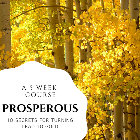 PROSPEROUS - 10 Secrets for Turning Lead to Gold