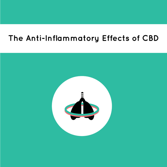 The Anti-Inflammatory Effects of CBD