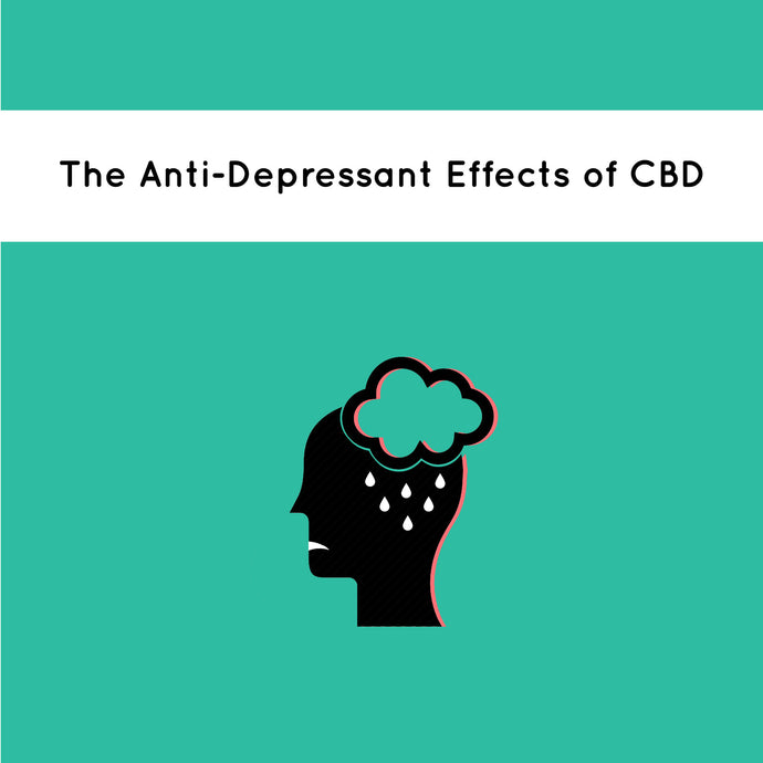 The Anti-Depressant Effects of CBD