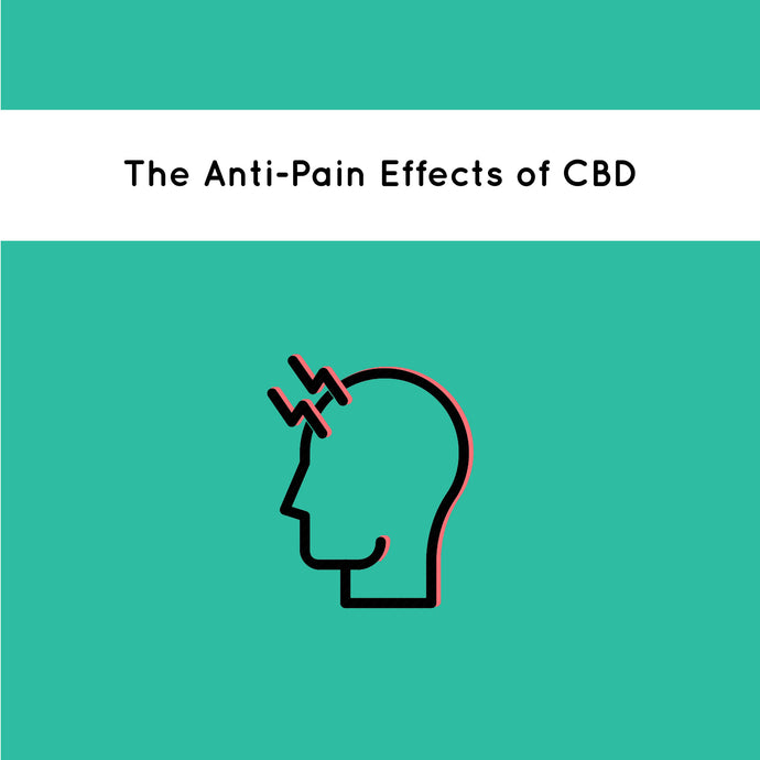The Anti-Pain Effects of CBD