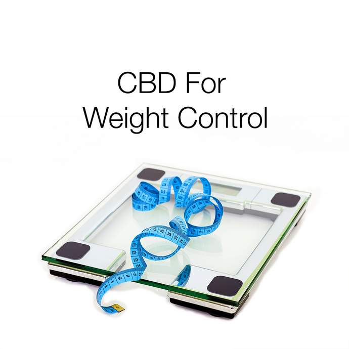 CBD: Useful for Weight Loss