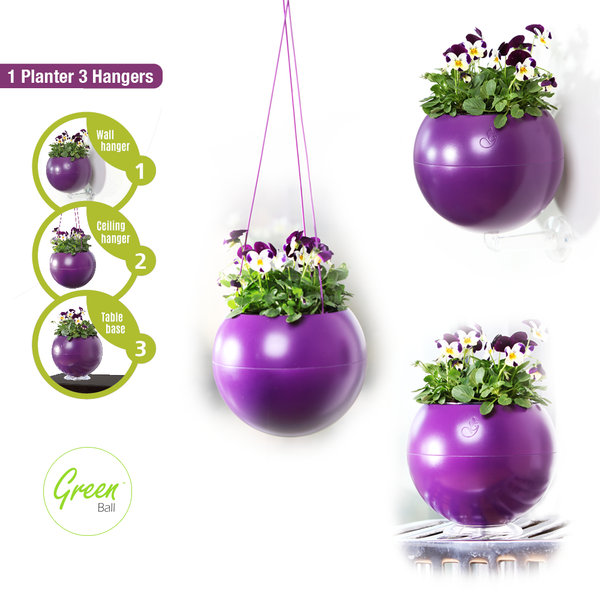 Greenball - Purple