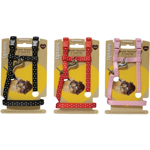 Polka Dot Harness and Lead Set
