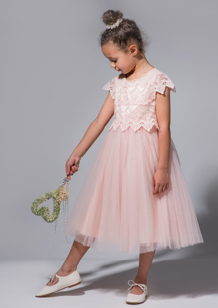 Lucy Lace Bodice Scallop Dress Blush