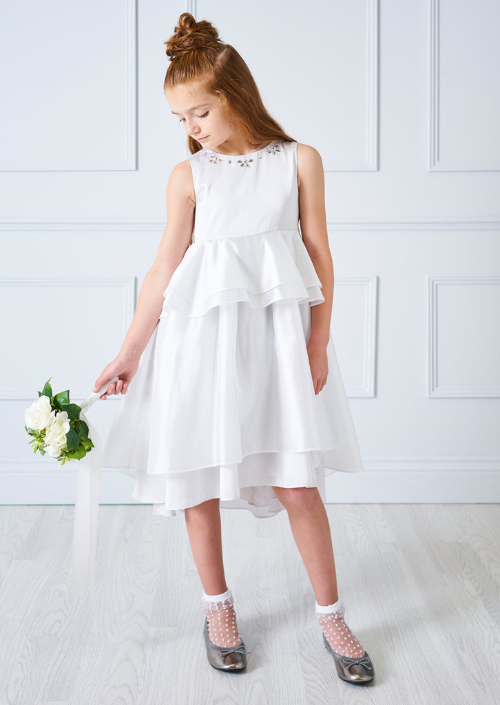 Alexa Organza Dress