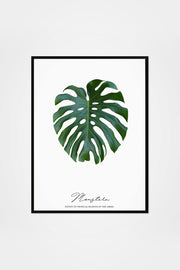 Monstera Print - Slay My Print - The Sunday Home