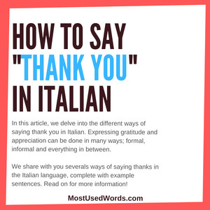 "How Do You Say ""Thank You"" in Italian (If You Want To Express Your Gratitude With Than Just ""Grazie"")"