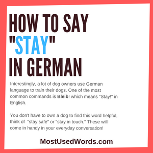 How Do You Say Stay in German? Stay with Us, and You Will Find Out!