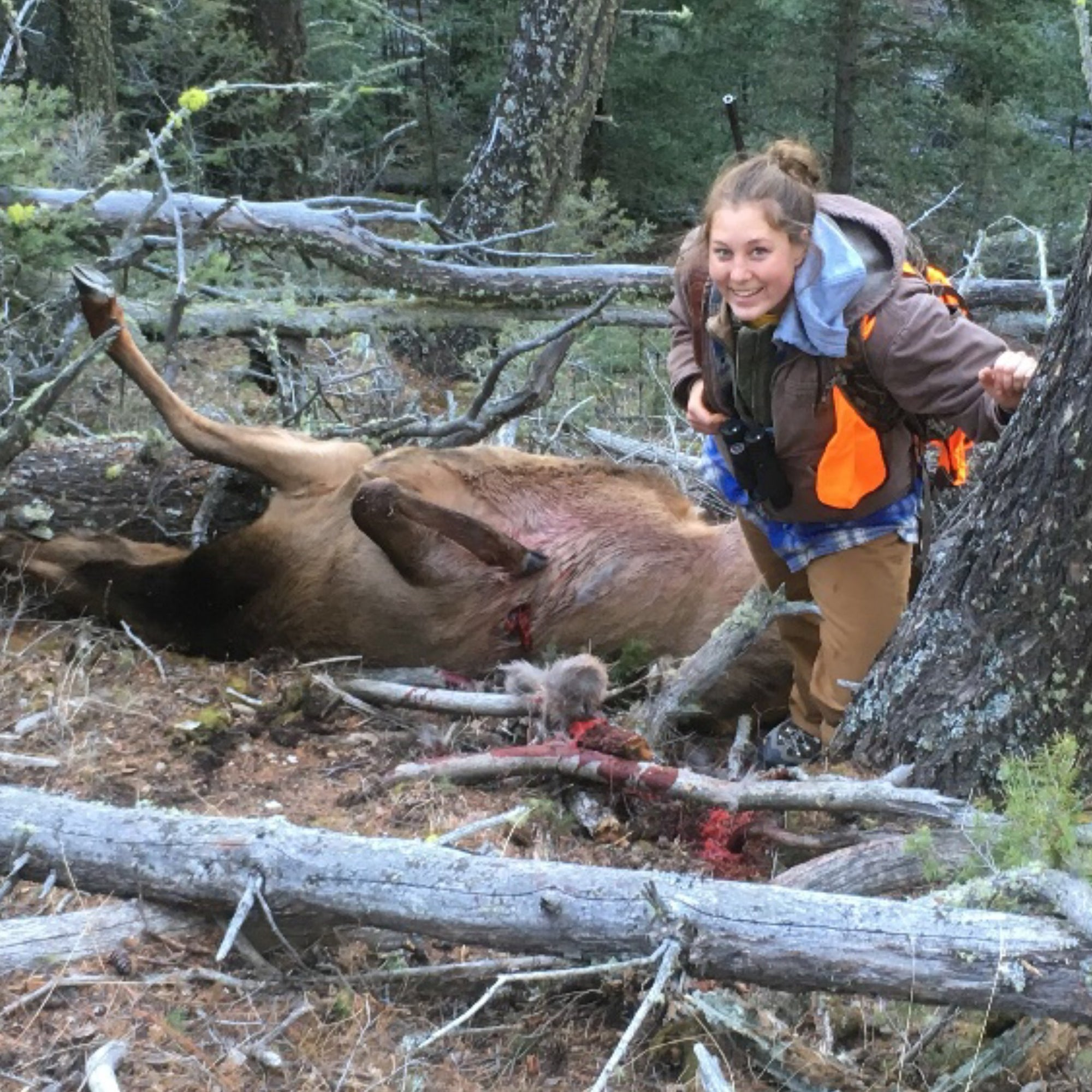Fighting Back from hip Surgery for my 1st Elk
