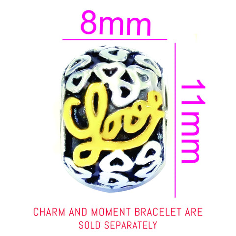 Love Two Tone Reversed Charm For Moments Bracelet