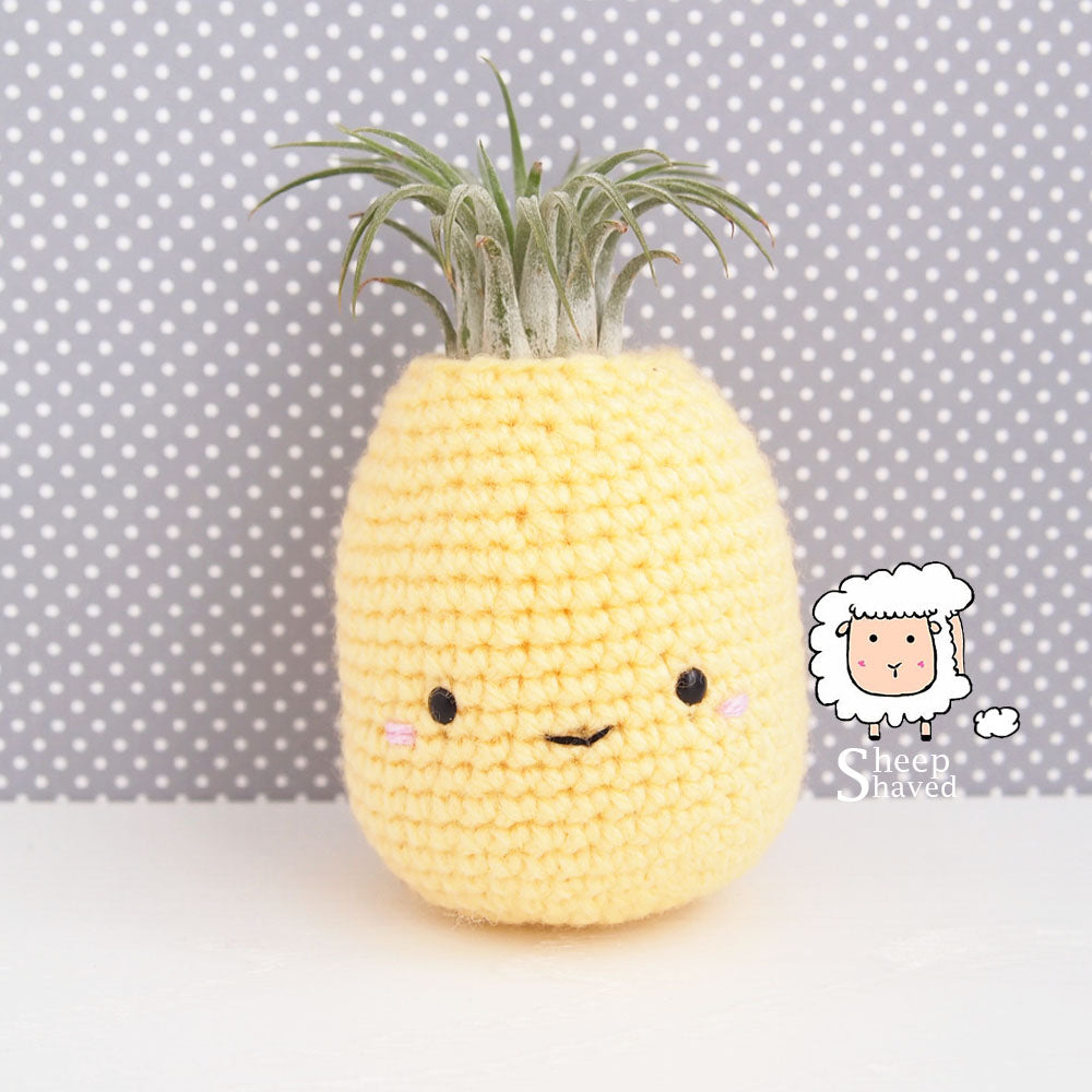 Pineapple Air Plant Holder - Made to Order