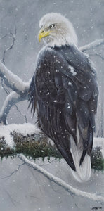 NEW PAINTING | Journey To Success - Bald Eagle