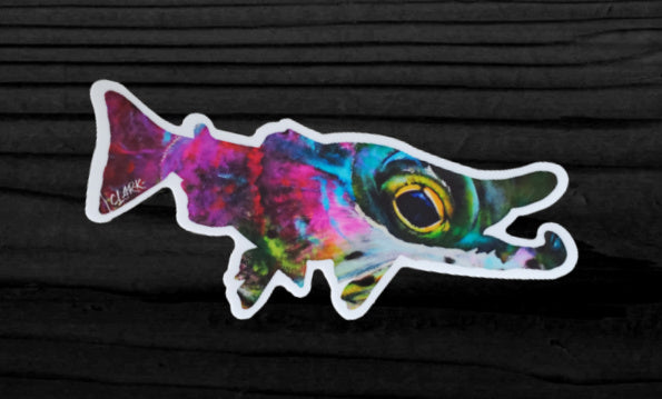 Eye Candy (Rainbow trout) - 6 x 2.5 vinyl decal