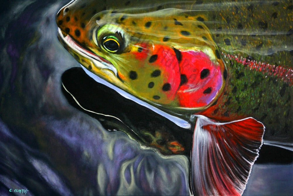 Deep Reflections Rainbow Trout
