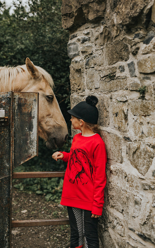 Fauna Kids hand printed pony sweatshirt in brilliant red. Designed and printed in Ireland