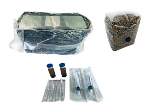 Bundle of Mushroom Growing Bulk Substrate and Rye Berry Grain Bag and Liquid Culture Kit