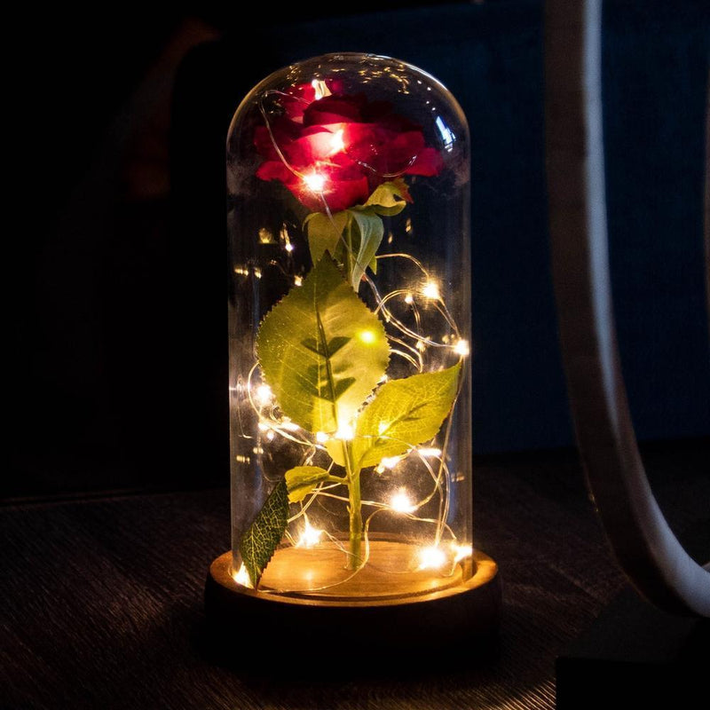 products/inspire-uplift-lamp-enchanted-rose-flower-lamp-3909494603875_1000x.progressive_1000x_5fa57ad5-fb0c-41be-bae6-f0d326cdaf92.jpg