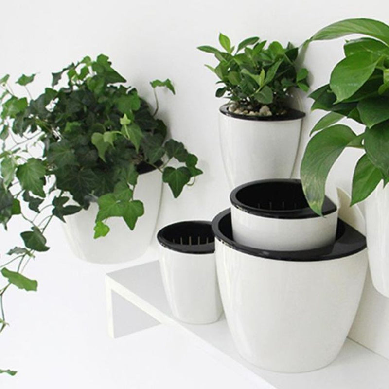 products/inspire-uplift-planter-self-watering-hanging-basket-1577910009867.jpg