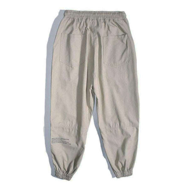 "AE ""Held"" Pants"