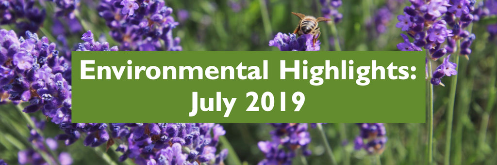 July 2019 - Environmental Highlights