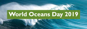 World Oceans Day Launches Exciting New Services from Green Man