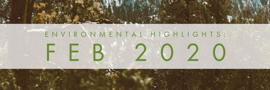 February 2020 - Environmental Highlights