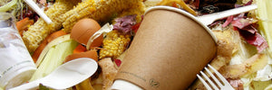 Biodegradable Vs. Compostable - What You Need To Look Out For