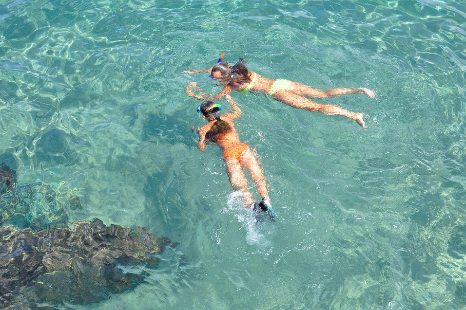Some Tips For Skin Diving on Your Holiday