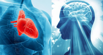 Alzheimer's Disease and Cardiovascular Health