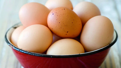 Will Eggs Increase your Cholesterol?