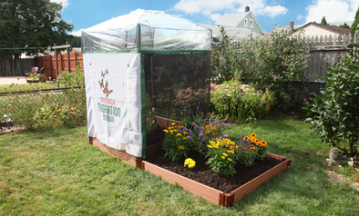 "Frame It All Tool-Free Classic Sienna 4' x 8' Pro Butterfly Pollinator - 1"" Profile - Senior.com Pollinators"